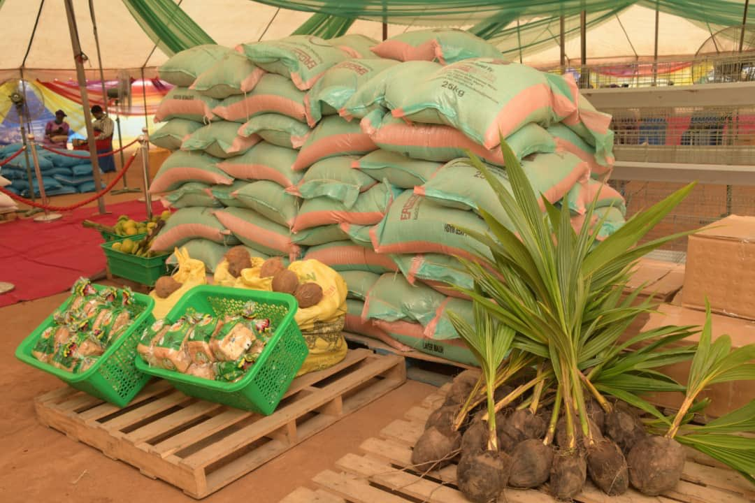 Bio-fuel from rice waste, untapped goldmine- APPEALS project Coordinator